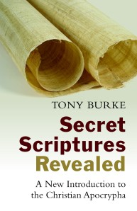 978-0-8028-7131-2_Burke_Secret Scriptures Revealed_cov.indd
