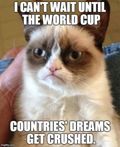 AngryCatWorldCup
