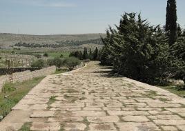 Roman Road at Tall Aqibrin
