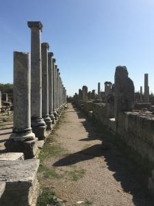 Roman Perge