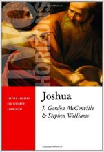 Joshua Commentary by Gordon McConville and Stephen Williams, Two Horizons Commentary