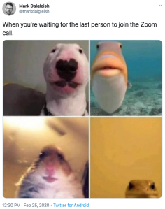 Zoom Call meme