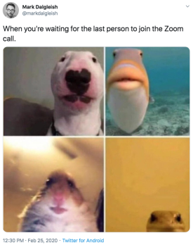 Zoom Call meme