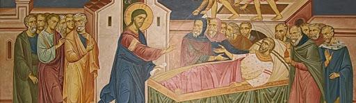 Jesu Heals the Paralytic